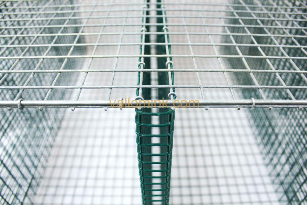 Wire mesh cages for adult minks